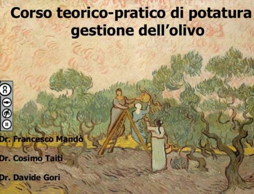 Dispense del corso di potatura dell'olivo