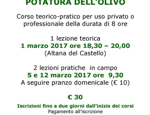 Corso di coltivazione e potatura dell'olivo